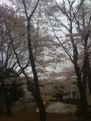 Tagiri_park_040911