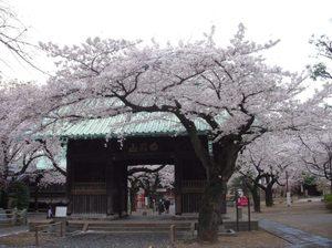 Yutenji_temple_040911_1