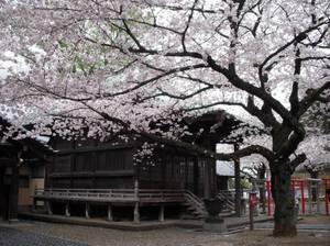 Yutenji_temple_040911_2